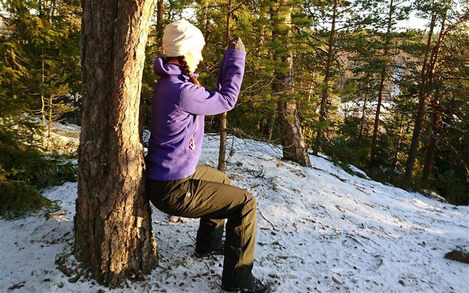 Wilderness wellness tours: forest meditation, crossnature and wildfood walks!
