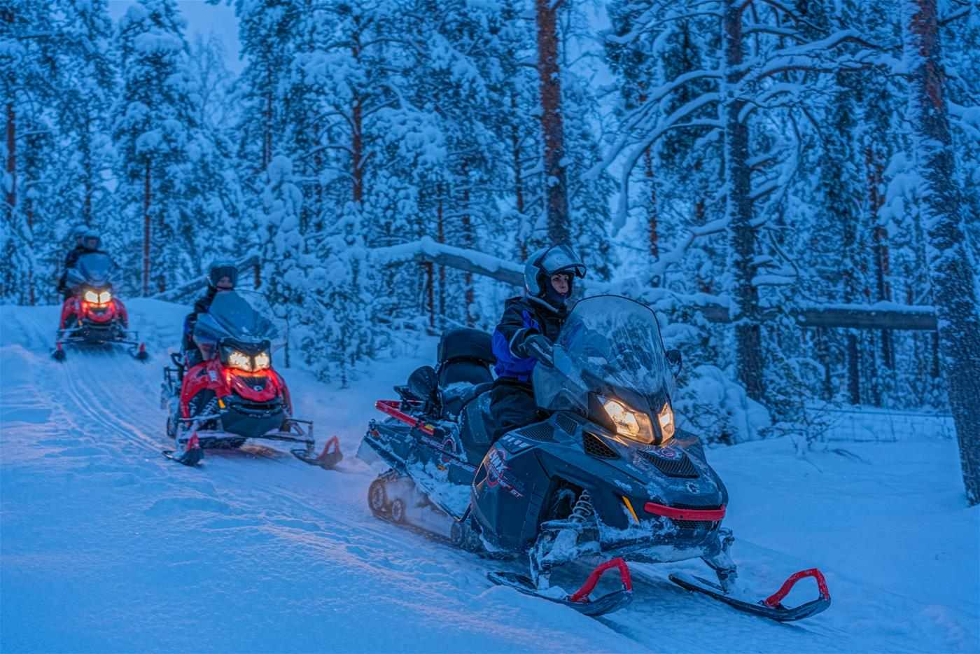 In winter it's time for some action! Join for a snowmobile safari!